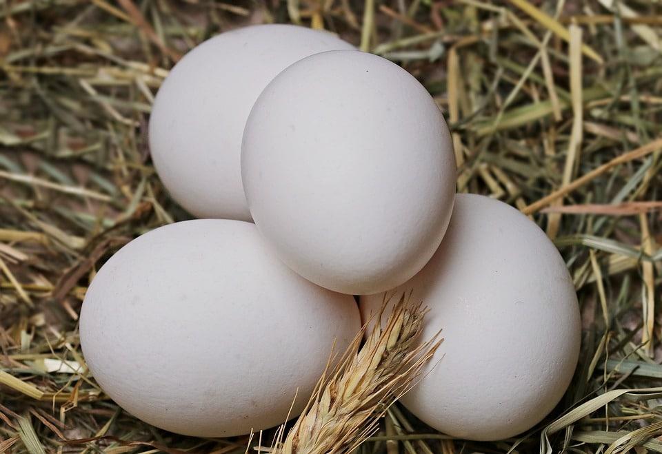 Que faire avec des blancs d'œufs: nos idées de recettes