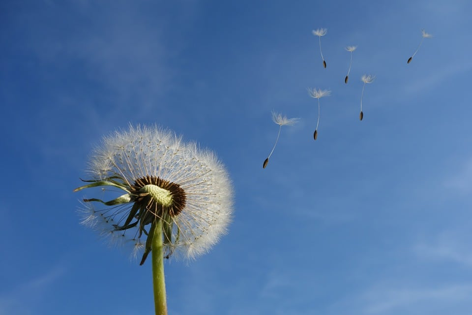 Gaz intestinaux: Tout ce qu'il y a à savoir