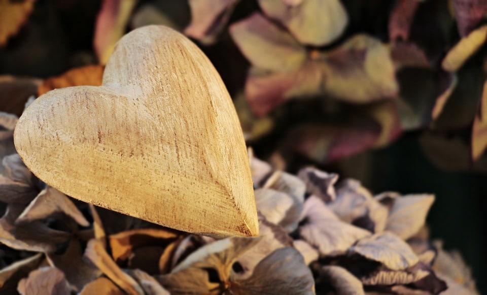 Cœur humain : tout savoir sur cette partie de notre anatomie