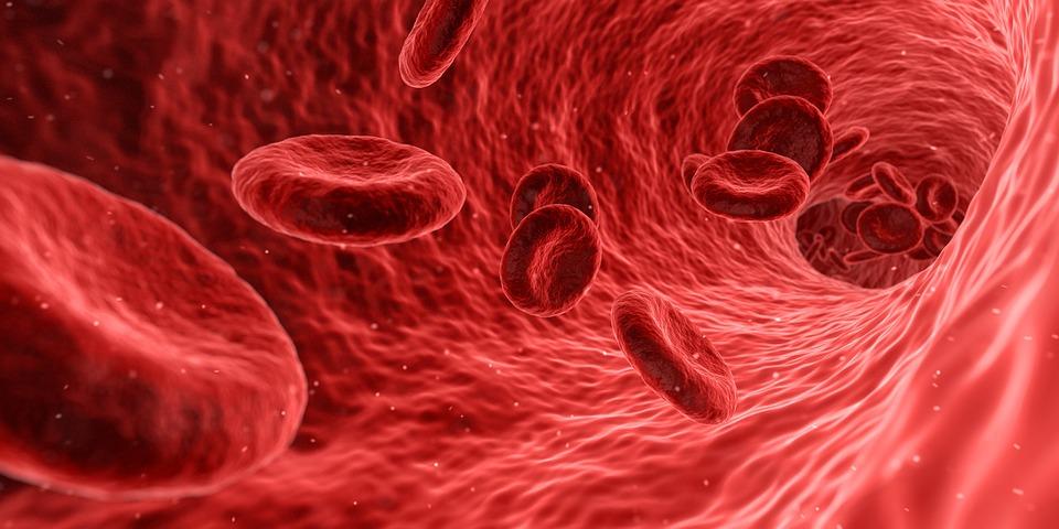 Hyperaldostéronisme: symptômes, diagnostic et traitement