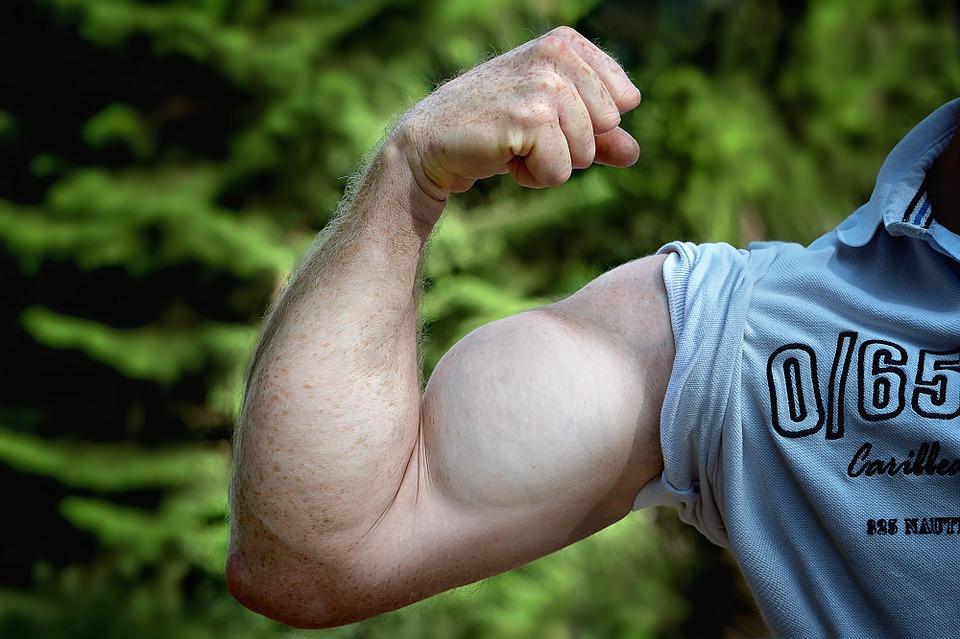 Muscler les bras : comment s'y prendre?