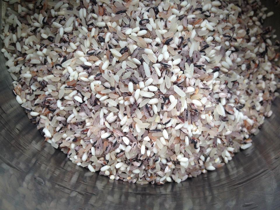 Riz noir : un super aliment qu'on retrouve de plus en plus dans nos assiettes