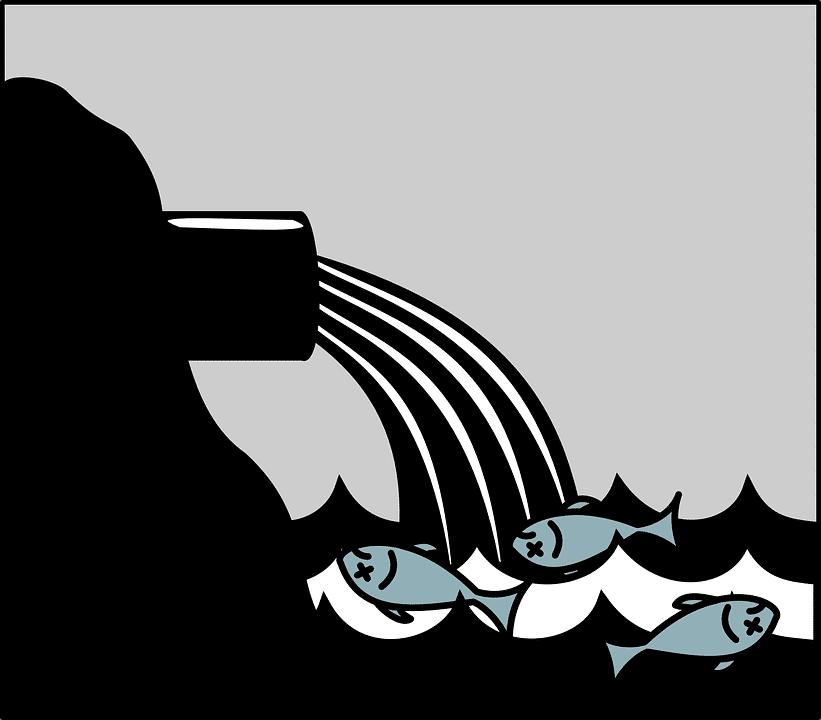 Filte eaux usees