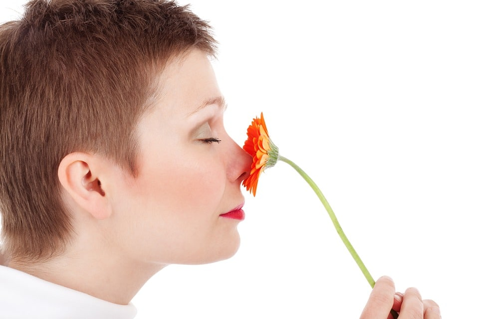 Arrêter saignement de nez : comment s'y prendre