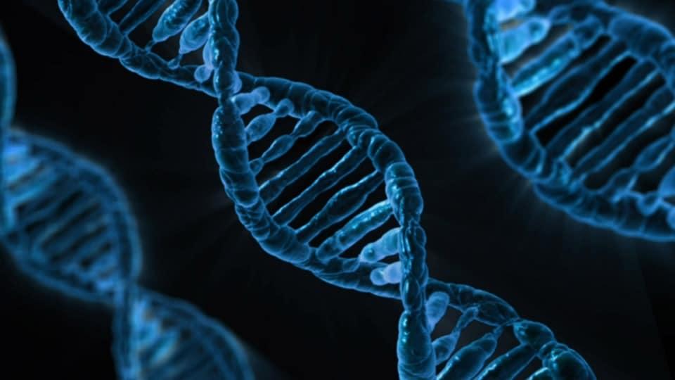 Test trisomie 21 : la solution de l'analyse de l'ADN placentaire