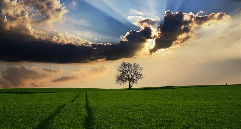 Lampe luminothérapie : l'essentiel de ce qu'il faut savoir