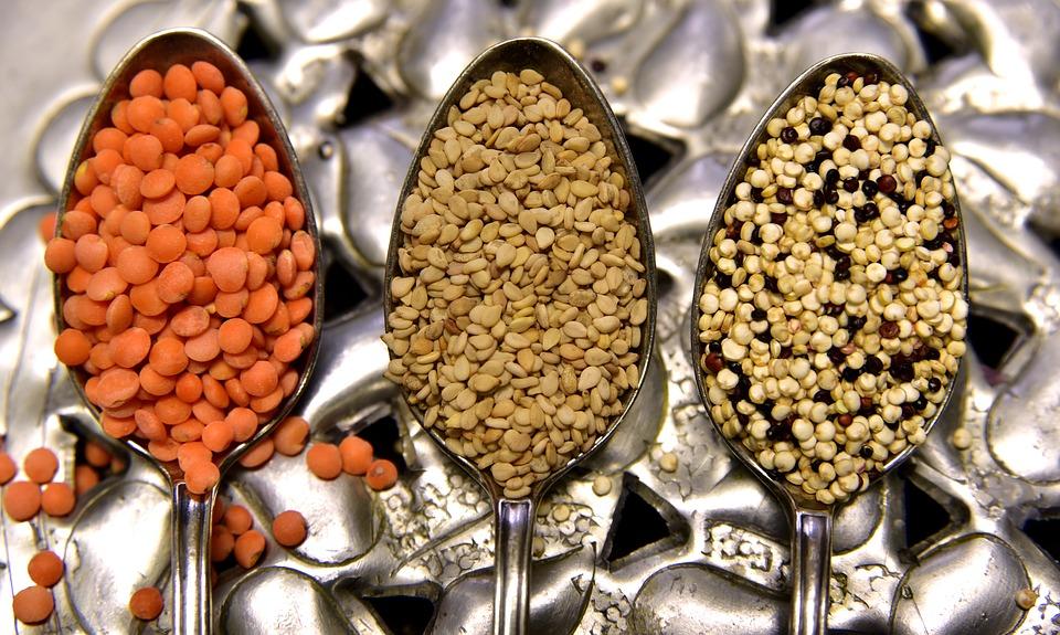 Aliments riches en protéines : comment jouir d'une bonnesanté