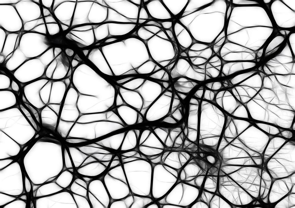 Maladie de Charcot : causes, symptômes et traitements