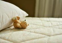 Quels sont les pièges à punaises de lit les plus efficaces ?